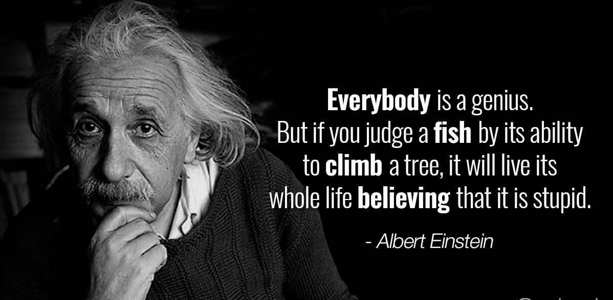 Albert-Einstein-quotes-Genius2